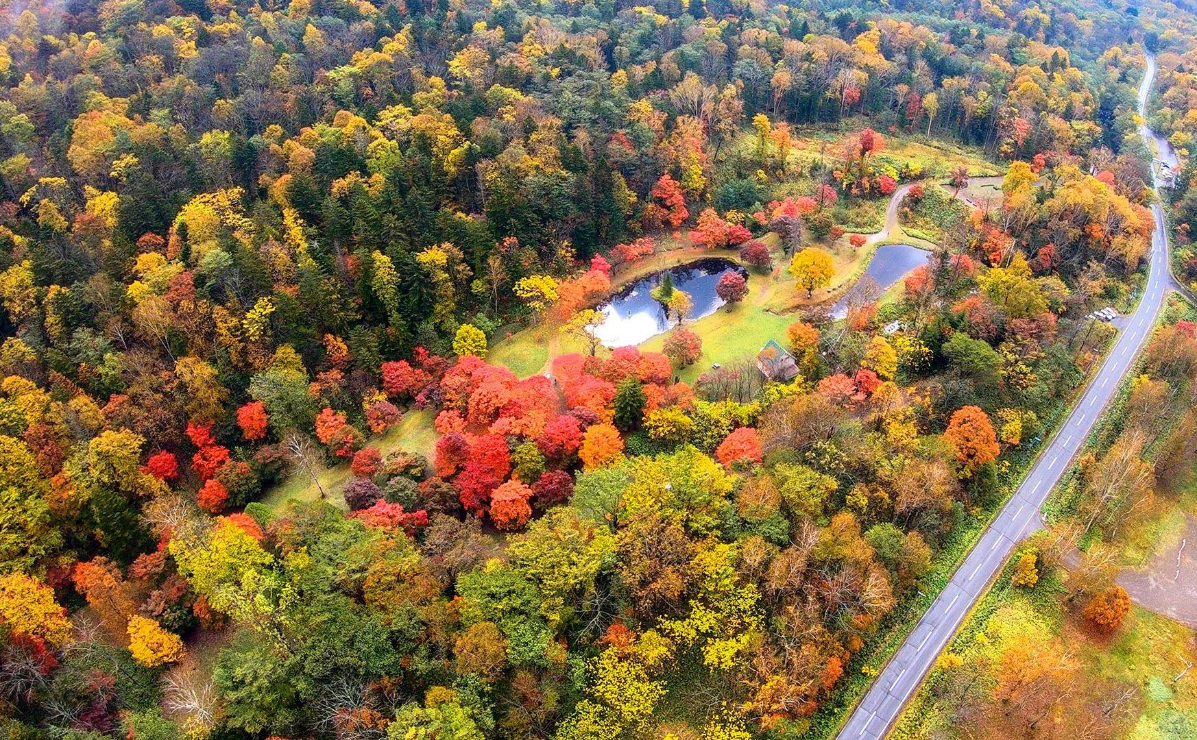 十勝で紅葉を楽しむならここ! 1ヶ月だけ一般公開される「福原山荘」